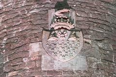 The Spire of Lloyd (Ronan McCormick) Tags: ilobsterit canon ireland dawn folly irelandsancienteast kells landscape lighthouse lloyd meath spire spireoflloyd stone tower winter