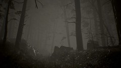 EnterSemeru_BlairWitch_20191006_19-38-51 (Jamie P Harris) Tags: blair witch video game forest horror screenshot screenshots xbox