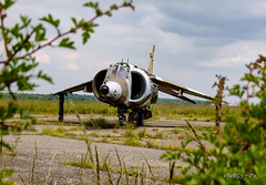 XV804 Harrier (deltic17) Tags: harrier harriergr3 gr3 jumpjet raf royalairforce derelict abandoned airfield photography urbex urbanexploration fighter bomber