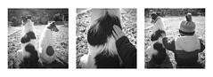 Les amis (Mathieu Calvet) Tags: triptyque triptych ricohgr3 ricohgriii nb noiretblanc blackandwhite ricoh pentaxart justpentax