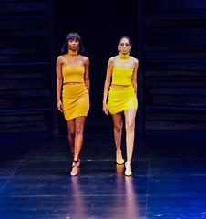2020.01.18 Art of Fashion at Arena Stage, Washington, DC USA 018 234113