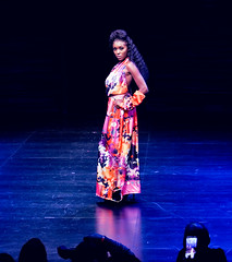 2020.01.18 Art of Fashion at Arena Stage, Washington, DC USA 018 234190