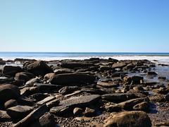 Rocky Shelf Outjut 7D2_4768 (ferreth) Tags: 2020 blog ratsofrass vacation beach california