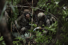 190820-F-YW474-0042 (Jay.veeder) Tags: japan okinawa kadena 18thwing pacaf indopacom pacom usfj airforce dod departmentofdefense peterreft11sfg 1stsfg oda greenberets junglewarfare jwtc campgonsalves jointops jointtraining joint toriistation specialforces sf readiness lethality army soldier tactics ocp guns weapons kadenaairbase