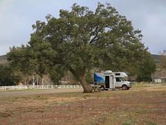 Ma Tar Awa Viejas Campground 7D2_4230 (ferreth) Tags: 2020 blog ratsofrass vacation california