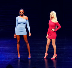 2020.01.18 Art of Fashion at Arena Stage, Washington, DC USA 018 234088