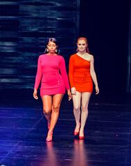 2020.01.18 Art of Fashion at Arena Stage, Washington, DC USA 018 234092