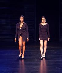 2020.01.18 Art of Fashion at Arena Stage, Washington, DC USA 018 234100