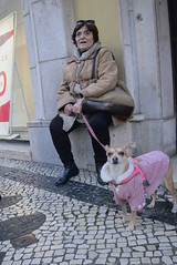 Sunny Sunday walks #street #lisbon #portugal #t3mujinpack (t3mujin) Tags: baixa places street urban woman dog theme animal lisboa pet city lisbon portugal subject t3mujinpack europe female nature people estremadura