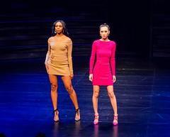 2020.01.18 Art of Fashion at Arena Stage, Washington, DC USA 018 234105