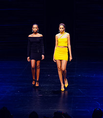 2020.01.18 Art of Fashion at Arena Stage, Washington, DC USA 018 234111