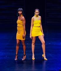2020.01.18 Art of Fashion at Arena Stage, Washington, DC USA 018 234117