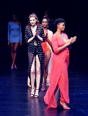 2020.01.18 Art of Fashion at Arena Stage, Washington, DC USA 018 234138