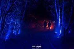 Licht bei der Nacht (Udo Kropeit Photo Art) Tags: ruhr 2010 ruhrgebiet zollverein zeche licht nacht eis schnee januar winterwald essen stadt photo art lichtkunst