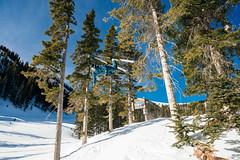 Thor (M///S///H) Tags: 1635mm 41635 a7riii air backflip bigair blueskies bluesky bluebird fieldgoaljump fly fullsend sendit ski skier skiing sony sonya7riii taos taosskivalley thor thorretzlaff trees trick tsv