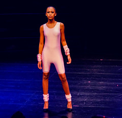 2020.01.18 Art of Fashion at Arena Stage, Washington, DC USA 018 234070
