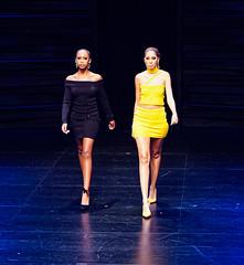 2020.01.18 Art of Fashion at Arena Stage, Washington, DC USA 018 234110