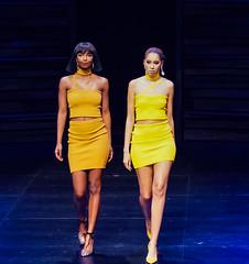 2020.01.18 Art of Fashion at Arena Stage, Washington, DC USA 018 234114
