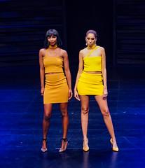 2020.01.18 Art of Fashion at Arena Stage, Washington, DC USA 018 234116