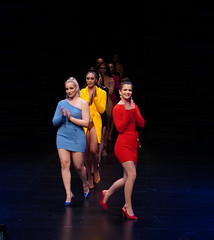 2020.01.18 Art of Fashion at Arena Stage, Washington, DC USA 018 234130