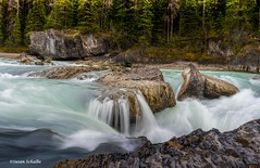 Watching the river flow (Photosuze) Tags: yolonationalpark water river longexposure rocks trees forest waterfall nature landscape canada britishcolumbia