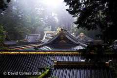 Nikkō - Shrines and Temples of Nikkō (CATDvd) Tags: nikond7500 日本国 日本 stateofjapan nippon niponkoku nihonkoku nihon japón japó japan estatdeljapó estadodeljapón catdvd davidcomas httpwwwdavidcomasnet httpwwwflickrcomphotoscatdvd july2019 architecture arquitectura building edificio edifici temple templo kantōregion kantōchihō regiódekantō regióndekantō 関東地方 nikkō nikkōshi 日光市 prefecturadetochigi tochigiprefecture tochigiken 栃木県 santuariosytemplosdenikkō santuarisitemplesdenikkō shrinesandtemplesofnikkō aasia