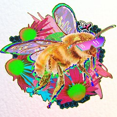 B1STICKER-BEBE-B1+frame (b1.bradstroud) Tags: bee honey honeybee bumblebee pollinate pollinator fly bug insect ecosystem flower pollen bud plants animal love wax wings color colors scheme red vivid spectrum vision super rad special save bees stamets paul mushroom collage art b1 be one wild vital critical earth mother bugs necessary honeycomb hive queen worker big best favorite viral legs geometry builder stinger sting