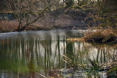 The ever changing pond (tonguedevil) Tags: outdoor outside countryside winter nature pond water reflections ripples trees colour light shadows sunlight