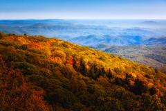 Blueridge Parkway Fall Display (VisualizedPerception) Tags: naturephotography northcarolina earth nature rogerchavers landscape blueridgeparkway mountains