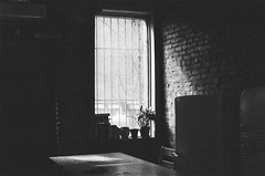 Morning Quiet (Gabriella Ollandini) Tags: shadow window bw 35mm contrast filmisnotdead filmphotography filmcamera ricoh lomo istillshootfilm interiors retro vintage nyc brooklyn silhouette solitary filmnegative filmnoir streetphotography empty silence quiet monochrome analog analogue stillness kr5 dark darkness domestic