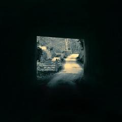 WILLASTON TUNNEL (flowermouth27) Tags: amatuerphotographer tunnel abandoned dissused gate wirral wirralpeninsula wirralway walks willaston blackandwhite blackandwhitephotography monochrome monochromephotography albumart art digital artwork digitalart photomanipulation border black path footpath