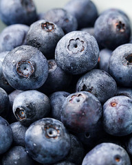 Macro blueberries with off camera flash. (Nicole Kirstie) Tags: blueberries macro macrophotography