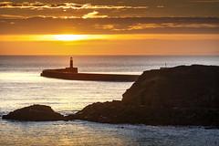 Seaham Harbour, Co Durham (DM Allan) Tags: seaham durham heritagecoast coast sea lighthouse sunrise dawn gold