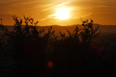 P1190174 (harryboschlondon) Tags: harryboschflickr harrybosch harryboschphotography harryboschlondon fuengirolajanuary2020 fuengirola 2020 spain costadelsol andalusia espana sunset