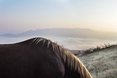 (Malykhanov) Tags: horses trip travel light landscape crimea clouds cloud mountains nature atmosphere