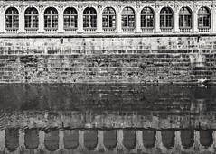 Reflection Dresden Zwinger (andreasscharr) Tags: canon canon5dmarkiv tamronsp2470f28 dresden saxony sachsen germany deutschland denkmal historisch history blackandwhite schwarzweiss black monochrom einfarbig architektur architecture wasser water reflection spiegelung