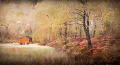 The Boathouse (jarr1520) Tags: landscape fall trees boathouse art textured sketched reeds water boats ferns