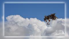 1 Cloudssnow (andantheandanthe) Tags: creative creativity closeup close up macro trix photoshop adobe kreativitet närbild makro kreativer herauf makrotix créativité créative gros plan fine creativa del primo piano di creatività sulla creatividad primer plano moln himmel snögubbe krans clouds sky snowman wreath wolken schneemann kranz couronne de bonhomme neige ciel nuages corona pupazzo neve cielo delle nuvole nubes muñeco nieve