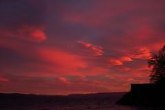 Rather special sunset, Achnaba (alanpitman703) Tags: sunset achnaba lochfyne scotland argyll january winter