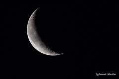Coissant de lune