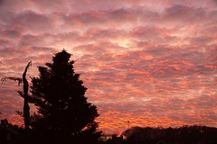 start of the week - making waves (quietpurplehaze07) Tags: sunrise january monday red clouds pink
