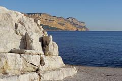 Pierre de Cassis et falaises du Cap Canaille (bernarddelefosse) Tags: cassis bouchesdurhône provence france paysage pierre roche calcaire falaises capcanaille mer méditerranée