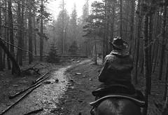 cowboy (Bo Dudas) Tags: cowboy trees bw blackandwhite blackwhite bnw rain perspective mono horse hat