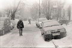 Rare snowy day in Moscow '20 (kotnorny) Tags: zorki bw bwphoto moscow 35mm