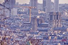 146 Paris Janvier 2020 - les toits de Paris depuis la Butte Montmartre, la cathédrale, son échafaudage, sa grue géante et la Tour Saint-Jacques (paspog) Tags: paris france montmartre butte buttemontmartre toits toitsdeparis roofs roofsofparis dächer januar janvier january 2020 cathédrale notredame grue notredamedeparis toursaintjacques cathédralenotredamedeparis échafaudage