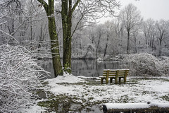 Happy Bench Monday! (JMS2) Tags: snow lake pond bench monday scenic outdoor landscape winter trees forest