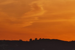 P1190191 (harryboschlondon) Tags: harryboschflickr harrybosch harryboschphotography harryboschlondon fuengirolajanuary2020 fuengirola 2020 spain costadelsol andalusia espana sunset