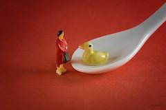 Single-eyed ceramic duck (@magda627) Tags: colormyworlddaily coth5 composition color macromonday sony macromondays flickr light ceramic edit cmwd macro ceramics cmwdred tiny red macromondaysceramic closeup hmm anteketborkacom mm lightroom detail