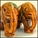 A Pair of Pachyderms