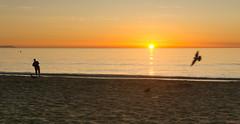 Sunrise, Lever du soleil, Espagne, Costa Del Sol, Torremolinos - 2321 (rivai56) Tags: sunrise leverdusoleil espagne costadelsol torremolinos 2321 sky soleil lever plage oiseau pêcheur au du sur la panorama fisherman beach